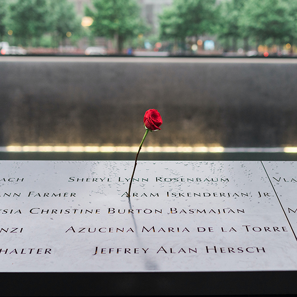 Red Rose placed on top of September 11 Memorial